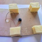 sponges and Piezo Sensor